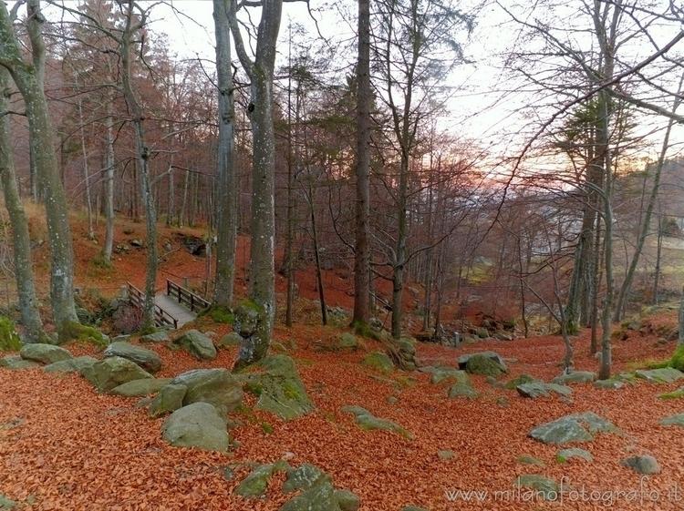 Sanctuary (#Biella, Dead leaves - milanofotografo | ello