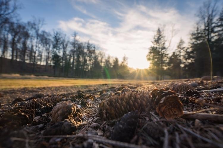 *Pining Winter* days temperatur - jeffmoreau   ello
