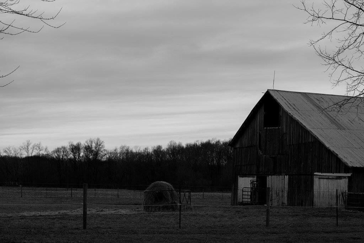 beauty bleakest skies, saddest  - elysian_farm   ello