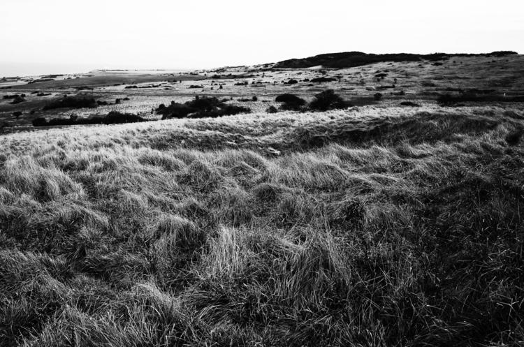Scottish afternoon - mypentax, ricohgr - cyrilcaine   ello