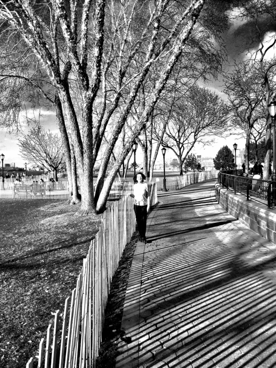 Hudson River NYC - mydogspot | ello