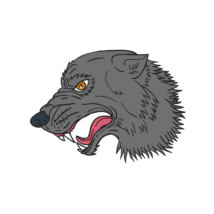 Head - Grey, Wolf, Growling, Drawing - patrimonio | ello