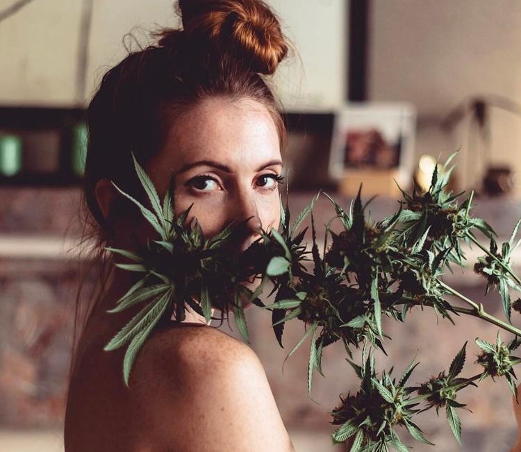 Secret Side Effects: Plant Amaz - thekindland   ello