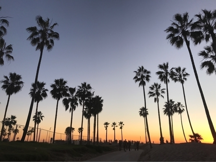 Trips California - mirabitts | ello