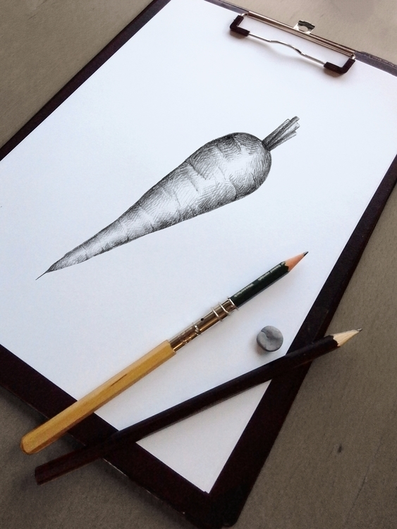 Carrot illustration illustrated - nantia   ello
