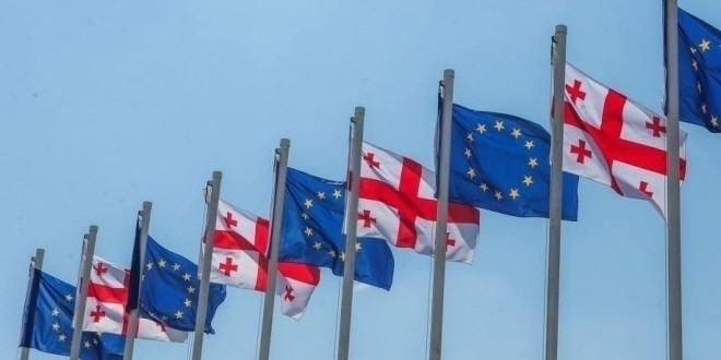 Council adopted regulation visa - maiasimonishvils | ello