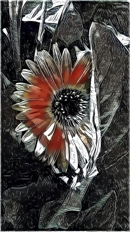 Spring Flower Garden Apps - mikefl99 - mikefl99 | ello
