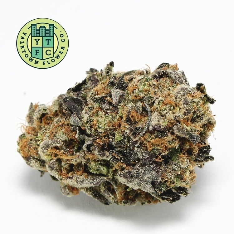 Craft Cannabis finest Gelato Ya - ytfc | ello