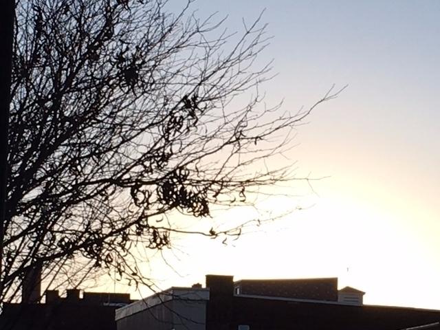 sun rise skyline - mephit | ello