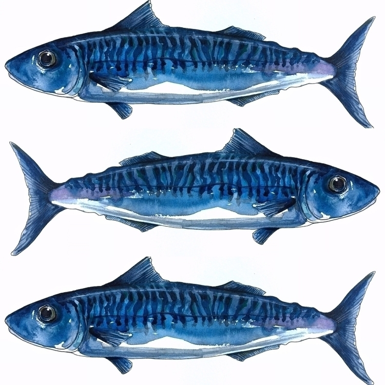 blue, indigo, nautical, illustration - aliellydesign | ello