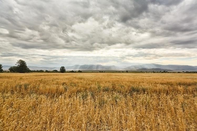 cousins ranch. Northern Cali 5D - wildlogan85 | ello