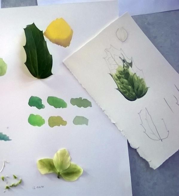 teaching gardens yesterday, wai - lizzieharperillustrator   ello