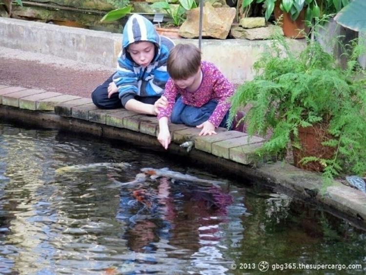 Careful - bite! children fascin - thesupercargo | ello