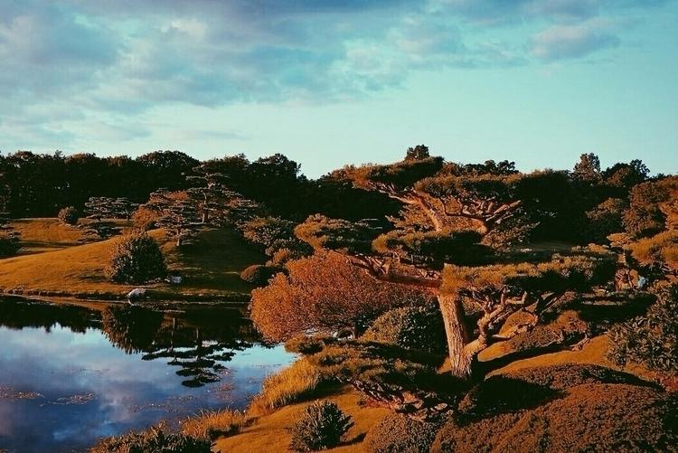 landscape, photography - anyabelomoina | ello