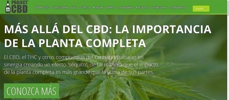 PROJECT CBD SPANISH - Spanish, mente - ellocannabis | ello