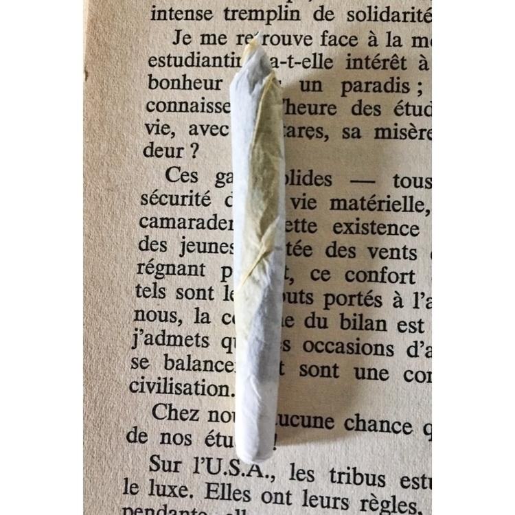 Portrait - marijuana, cannabis, weedart - jphoto_project | ello