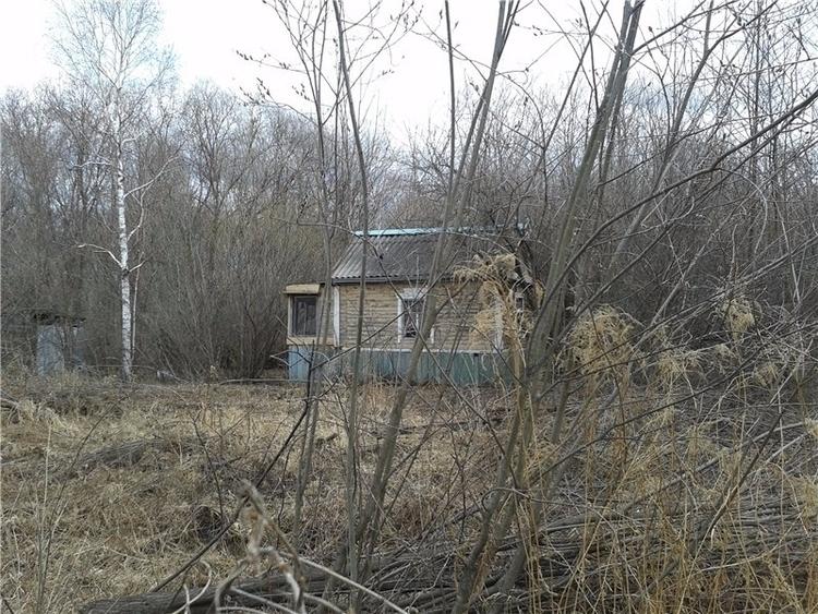 abandoned dacha house garden ma - kseniaanske | ello