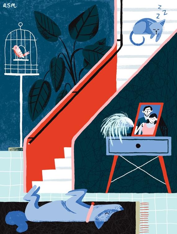 Waiting humans home - pets, illustration - alexander_mostov | ello