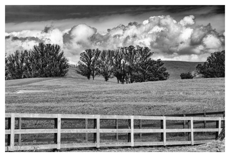 Ranch. Sonoma, CA - guillermoalvarez | ello