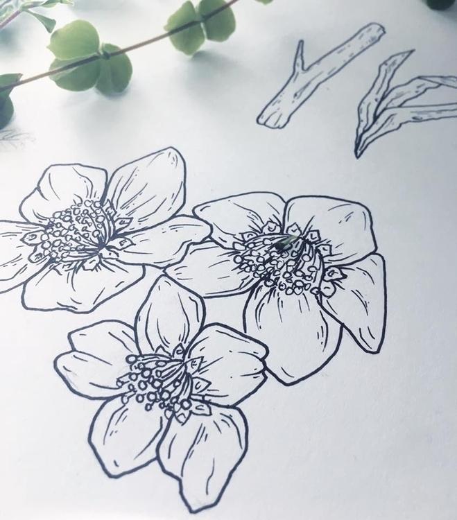 Morning doodless - flowers, illustration - jonnasjoblom | ello