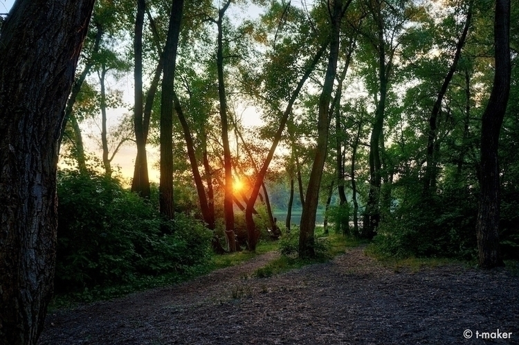 Path River Sunset | Flickr: Dev - t-maker | ello
