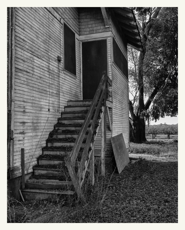 Abandoned house, Elk Grove, CA - guillermoalvarez   ello