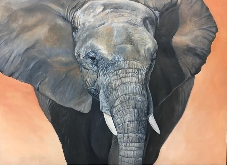 African elephant, WIP, oil crad - bryanhollandarts | ello