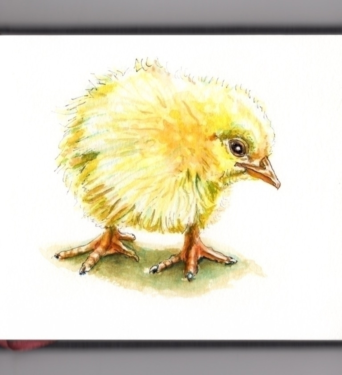 Spring Chicken - watercolor, watercolour - doodlewash | ello