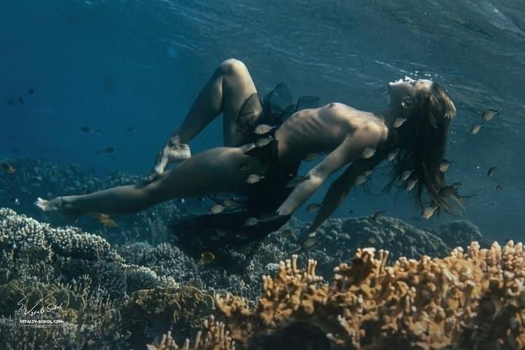sea, underwater, swimming, diving - ukimalefu   ello