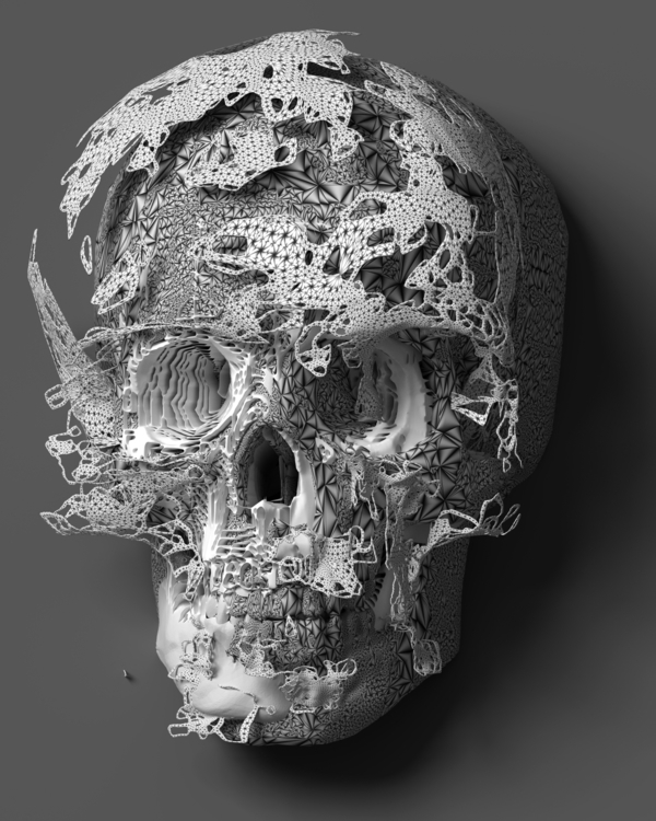 skull-005 - 3d, skeleton, blender - srcxor | ello