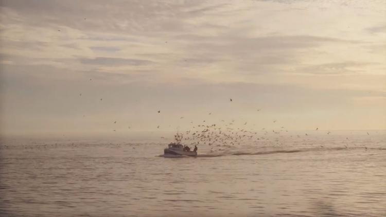 Music video premiere: Solitude  - pianoandcoffee | ello