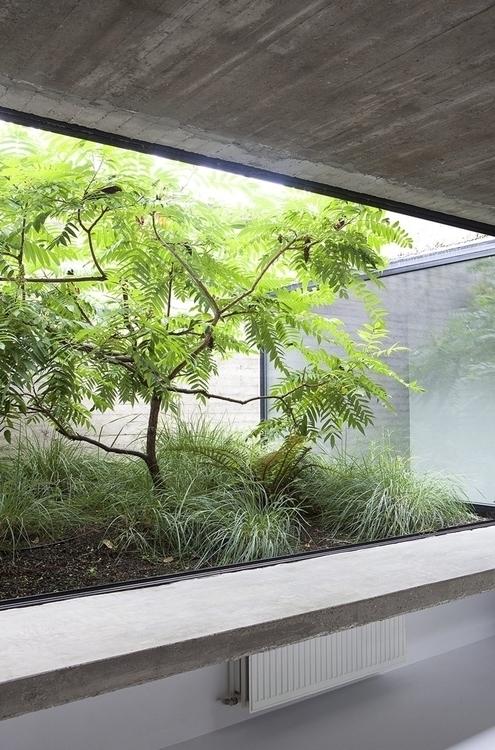 Glass-enclosed garden. House EL - upinteriors | ello