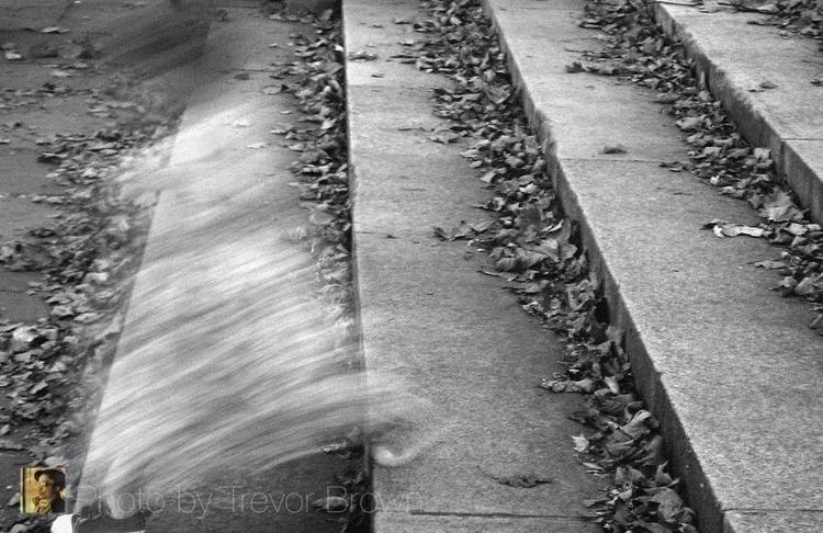 Blur Photo Trevor Brown - trevorbrown - trevor_brown_artist   ello