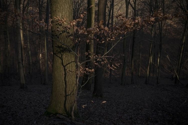 lesografie, photography - petermarek | ello