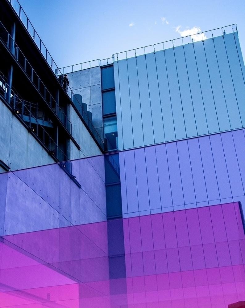 whitney biennial - nyc - colors - imdaric   ello