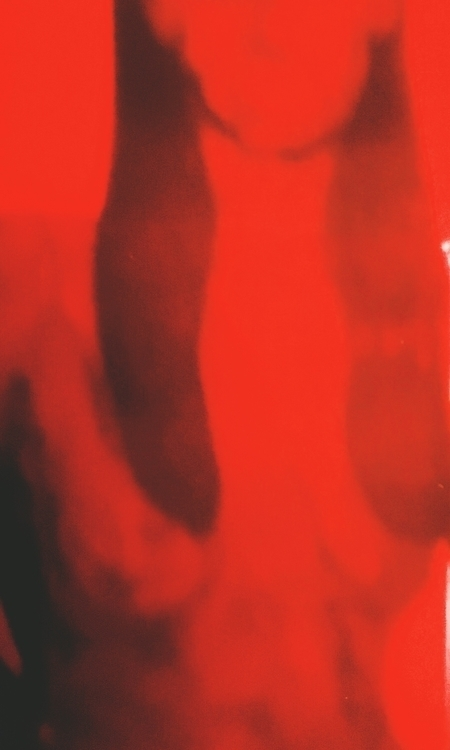 grandiose, III GREET BEAR - polaroid - jkalamarz | ello