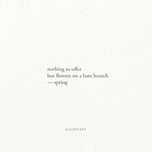 Haiku / offer flowers bare bran - kashyapi | ello