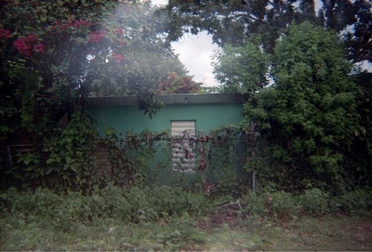 photography, film, 35mm, lomography - alexanderbauer | ello