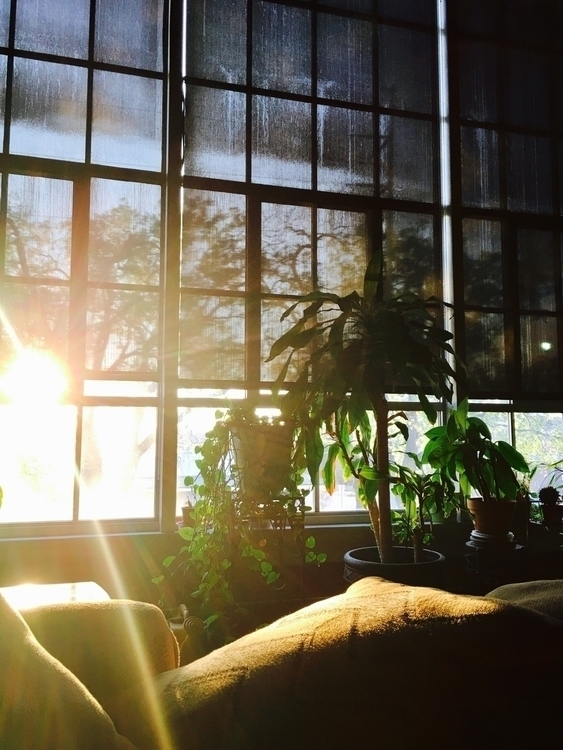 light nice day - lalasparkles | ello