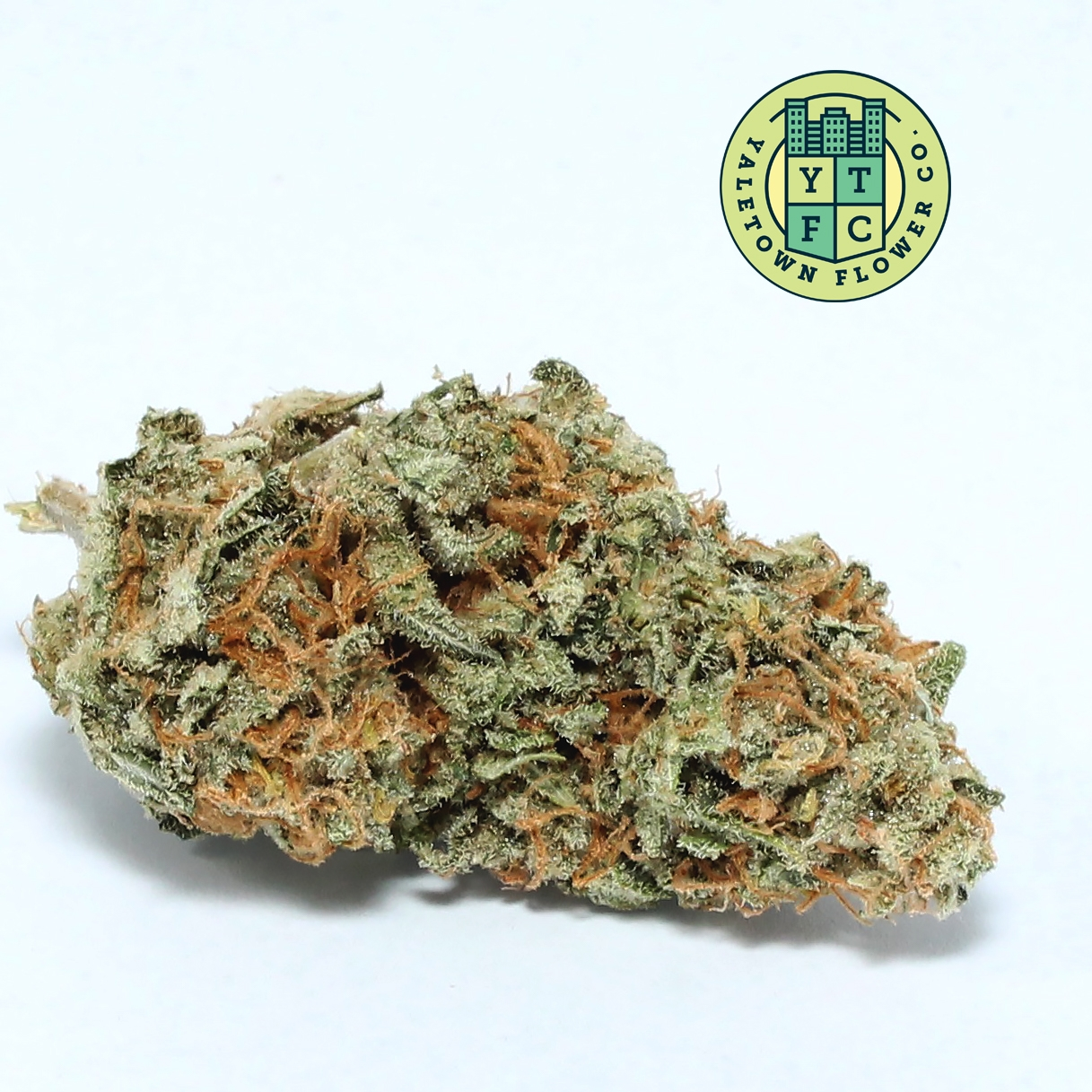 Yaletown Flower Co. dropped Blu - greenz | ello