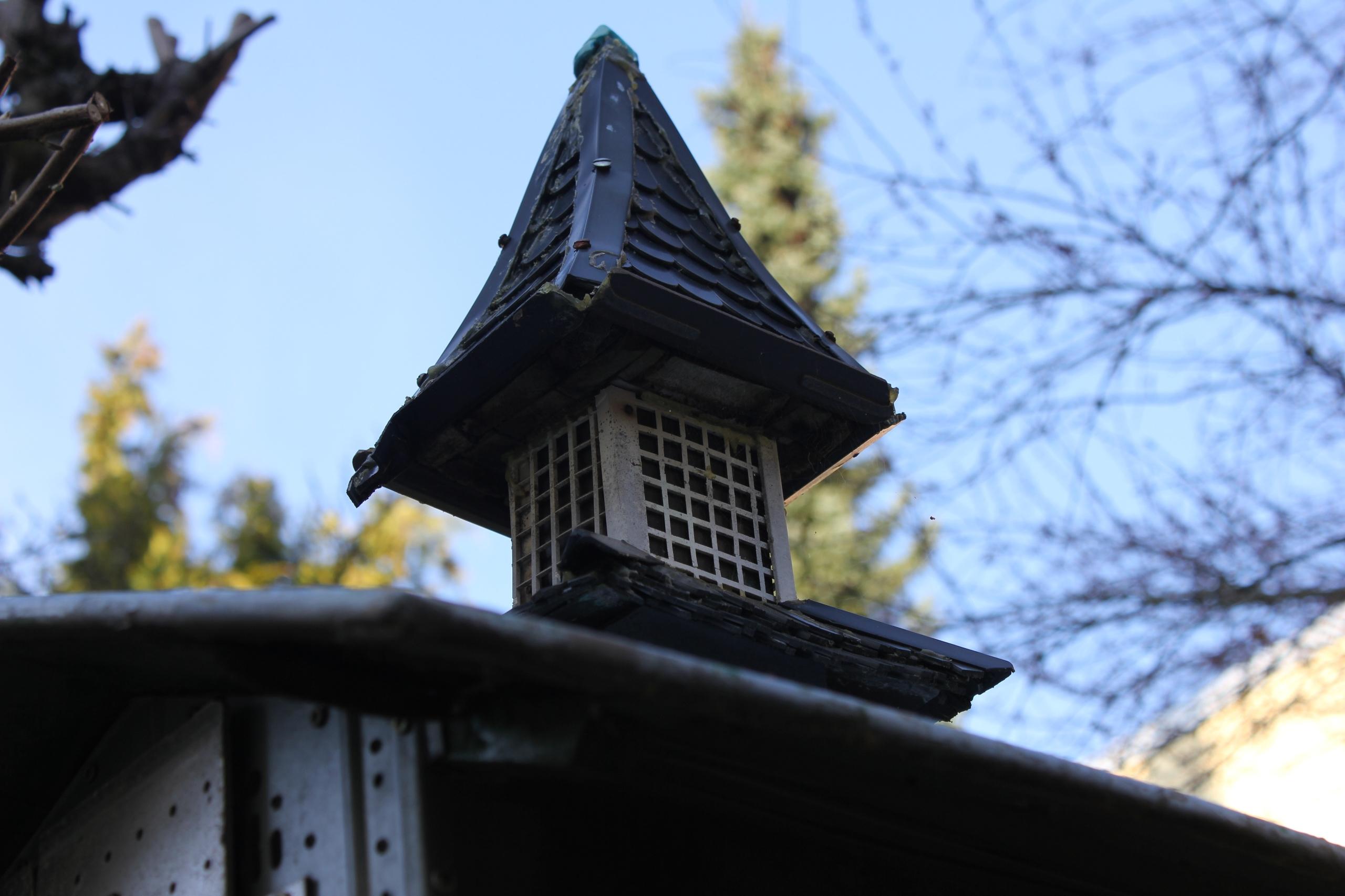 Birds - spooky, architecture - golan_pat0s   ello