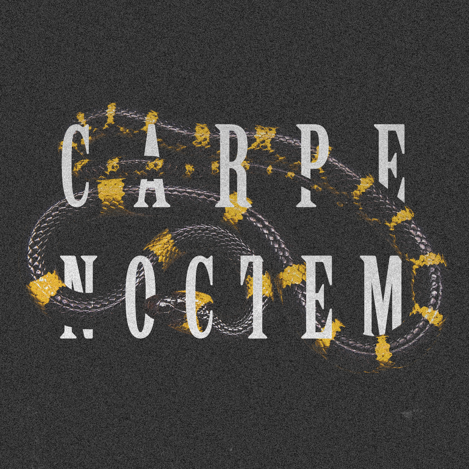 seize night ~ - photoshop, typography - sarathecreator | ello