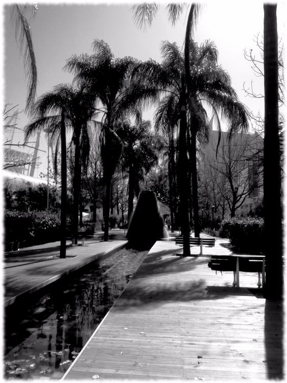 photography, blackandwhite, street - hsaptus | ello