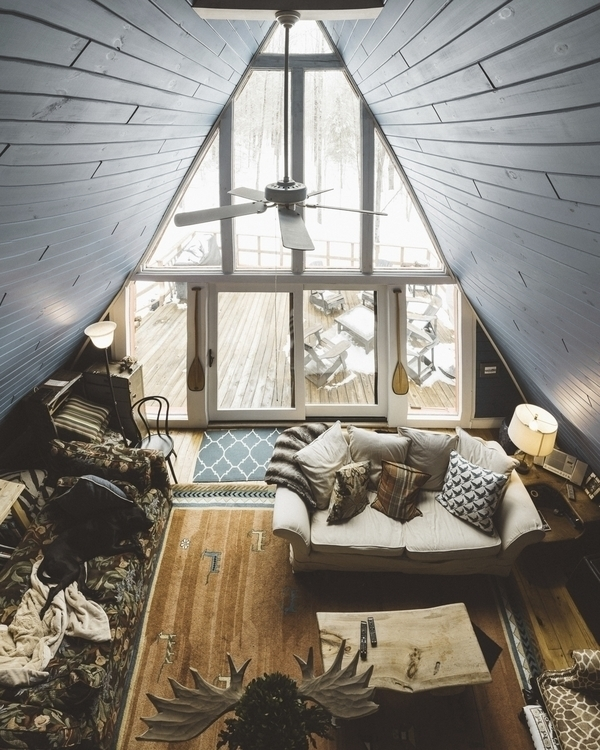 Birthday cabin luxury dog bed B - brendanlynchphotography | ello