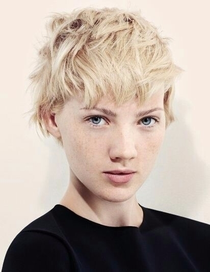 shorthaired, blonde, studio - xxm | ello