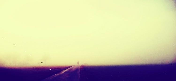 Ride ...#nature - photographie - ooii | ello
