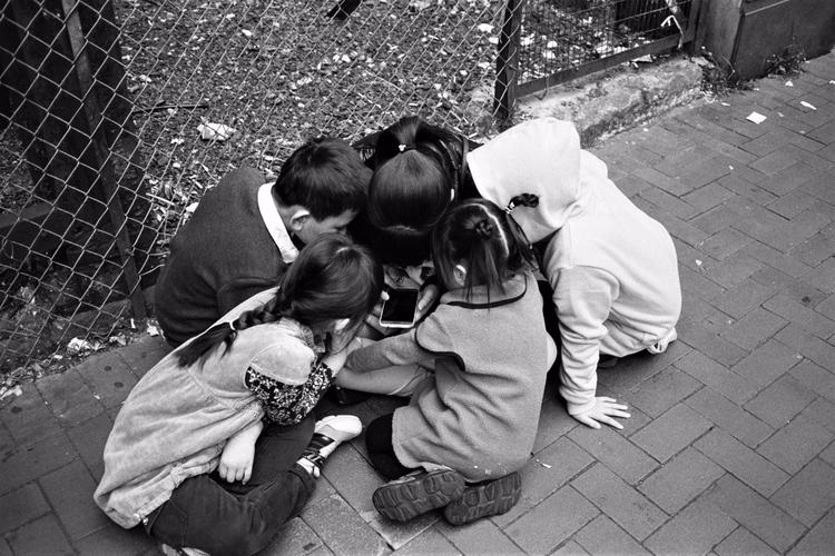 social order - kappuru | ello