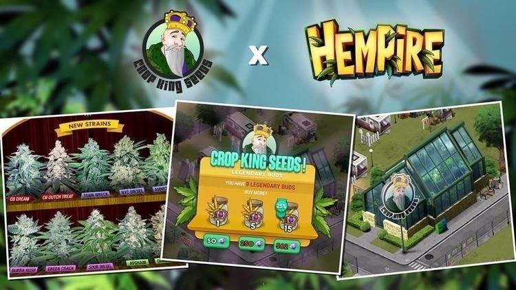 cannabis company featured video - cropkingseeds | ello