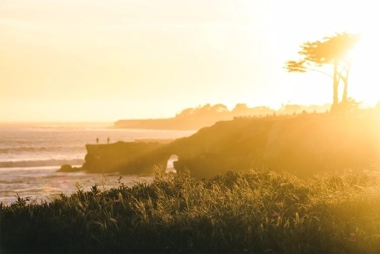 West Side Sunset II Santa Cruz - neonicecream | ello