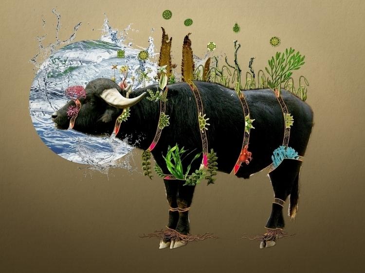 Bestiario: Búfalo de agua Colla - santasombra | ello